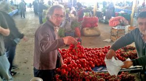 Mustafa selects tomatoes for meze.